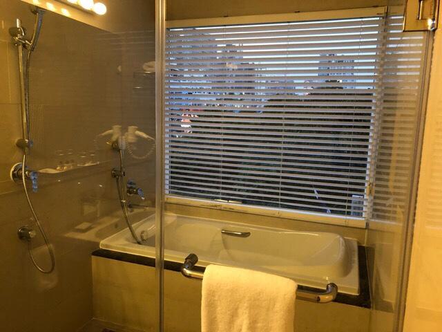 Parinda Hotel shower room