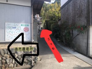神峯山寺近道