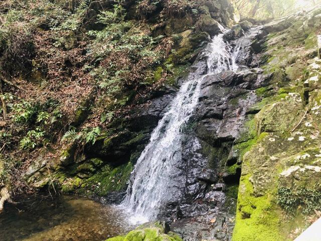 高槻の白滝